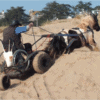 Go Anywhere with Pony Access, the Accessible Chariot