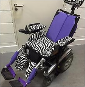 You, too, could have zebra stripes decorating your bright purple ride!