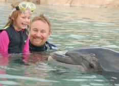 The Vogels watched Flipper to prepare for meeting a dolphin in real life.