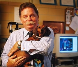 Biophysicist Richard Borgens holds a dog treated with polyethylene glycol in a recent study. Of 19 paraplegic dogs, 13 were walking in six weeks, and only three remained completely paralyzed.